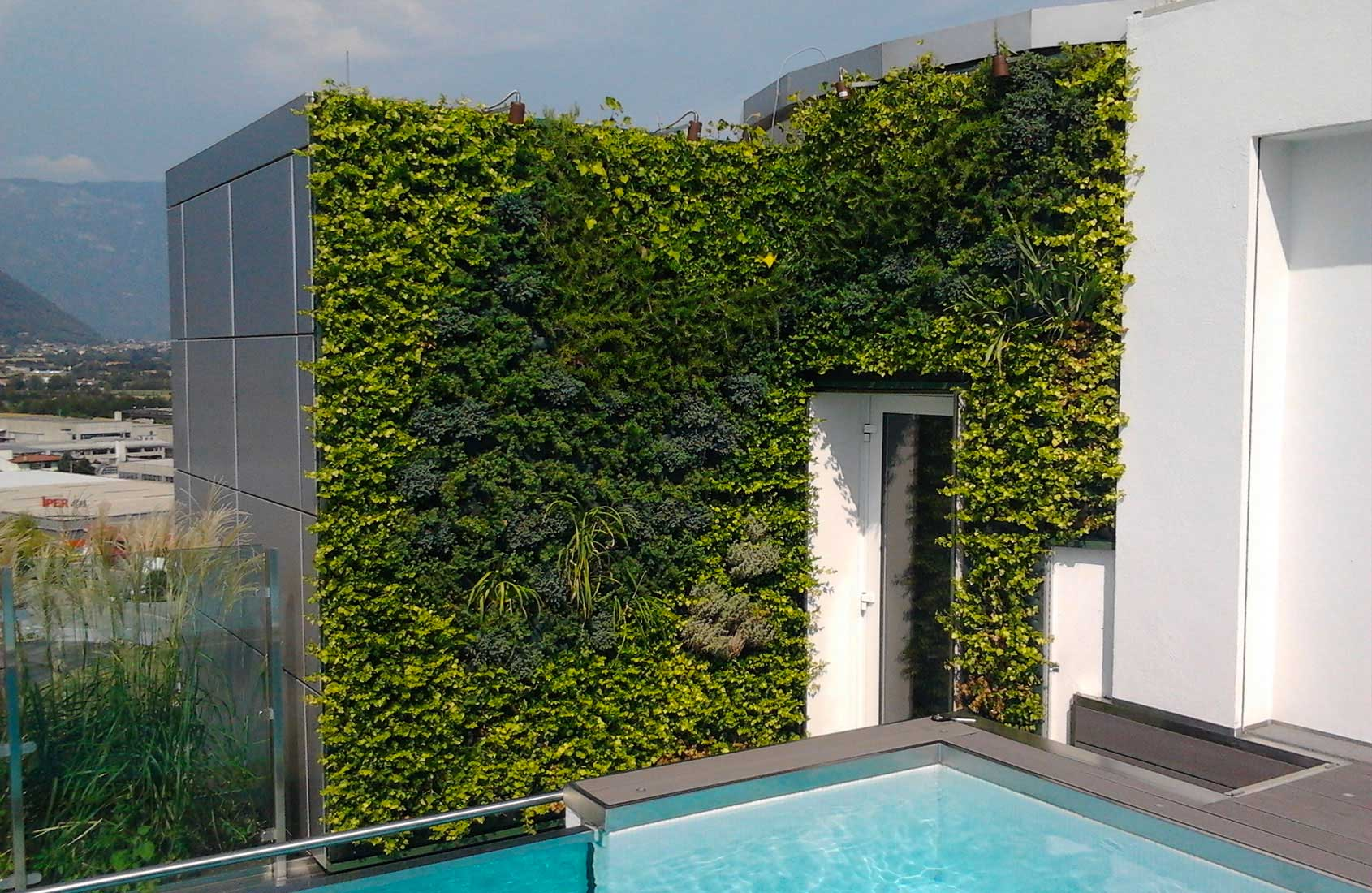 Giardini verticali realizzazione for Giardino verticale interno